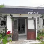 pipineo1[1]